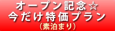 オープン記念プラン(素泊まり)